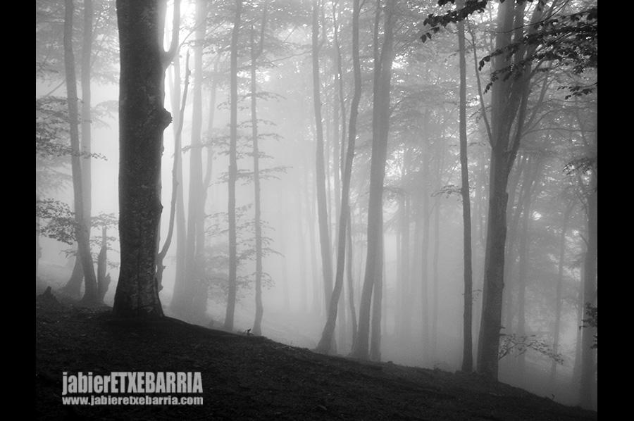 02 jabier-etxebarria-mi-mochila